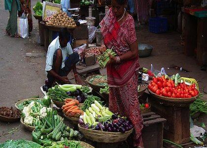 La India desde el sur (Parte II)