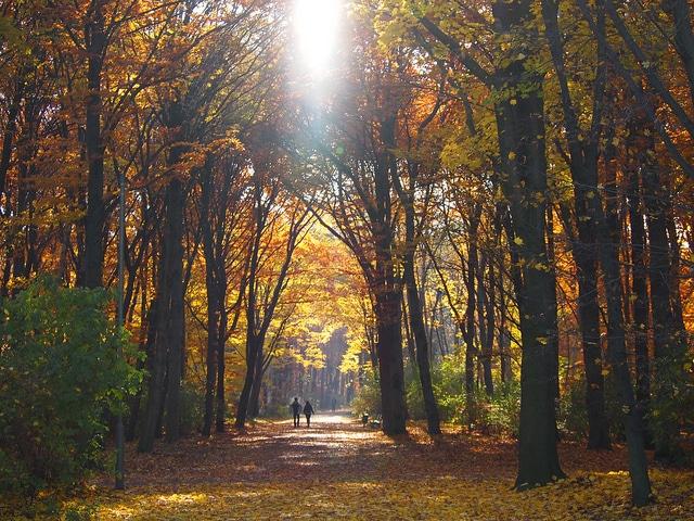 Parque Tiegarten Berlin