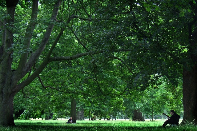 El Hyde Park de Londres