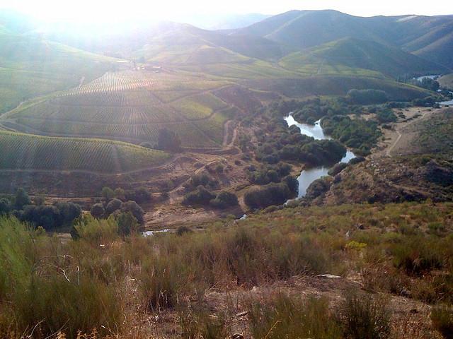 El valle de Coa, de vuelta a la prehistoria