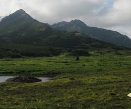 Respirando la pureza del parque Chugach