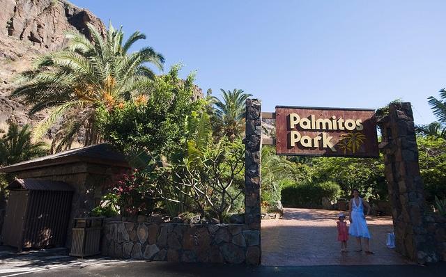 Palmitos Park y las mariposas