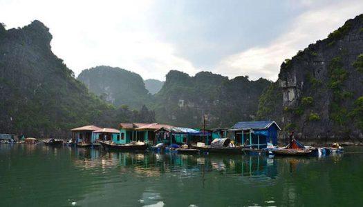 Viaje a Vietnam para conocer la Halong Bay