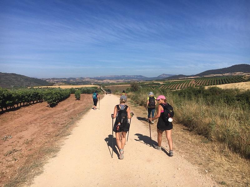 De Puente de la Reina a Estella - Camino Santiago