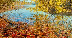 visitar el lago Schlachtensee berlin