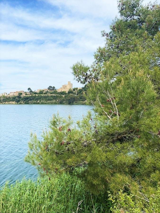 Excursión al Pantà de Foix