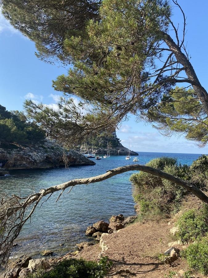 Guía de Menorca